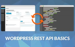 Learn the basics to use REST API with WordPress