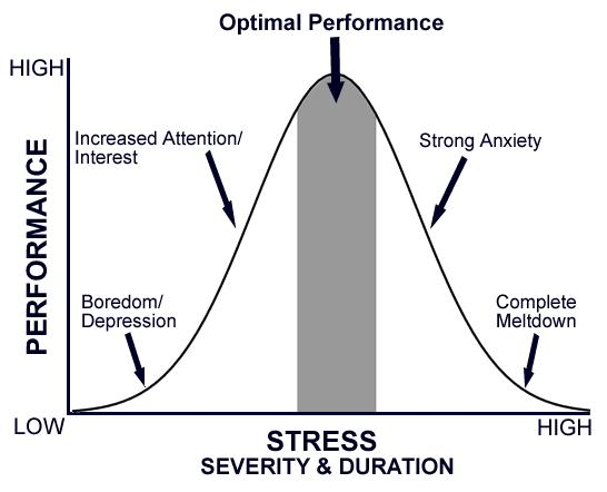 Comfort zone, performance and stress