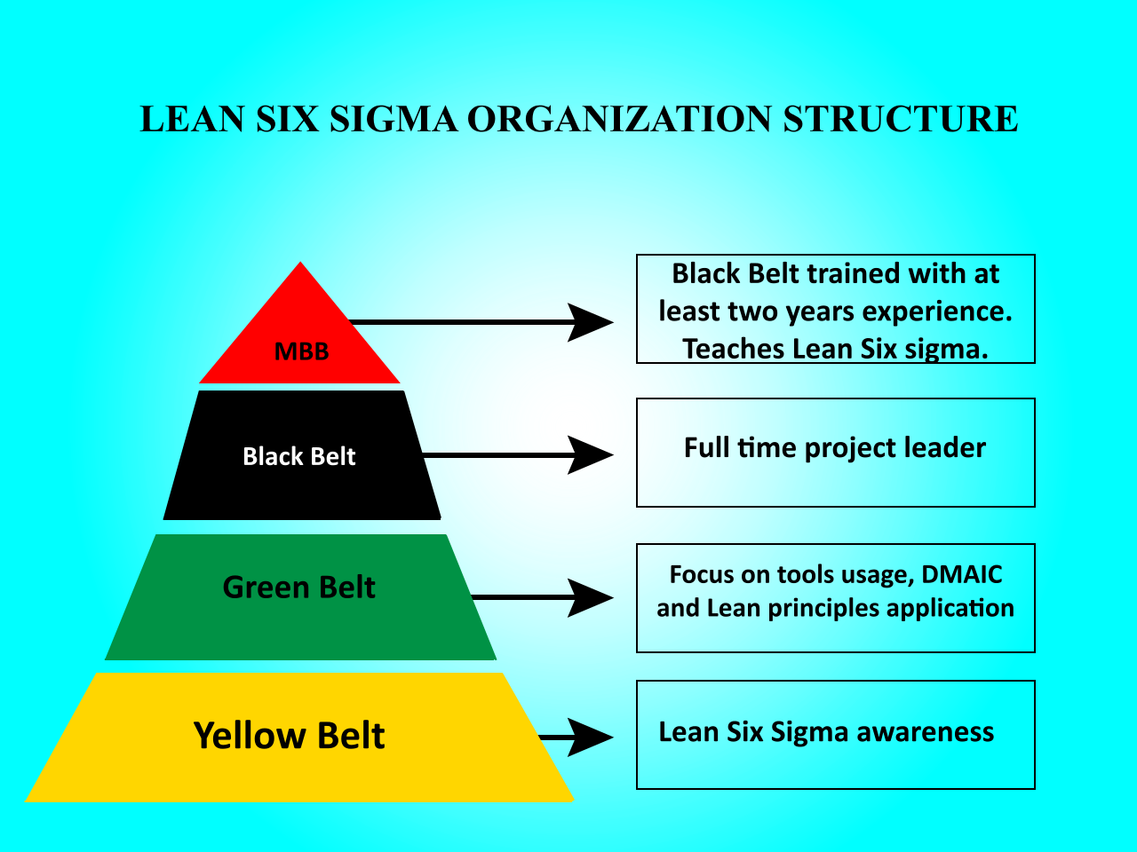 The Six Sigma Structure Pyramid