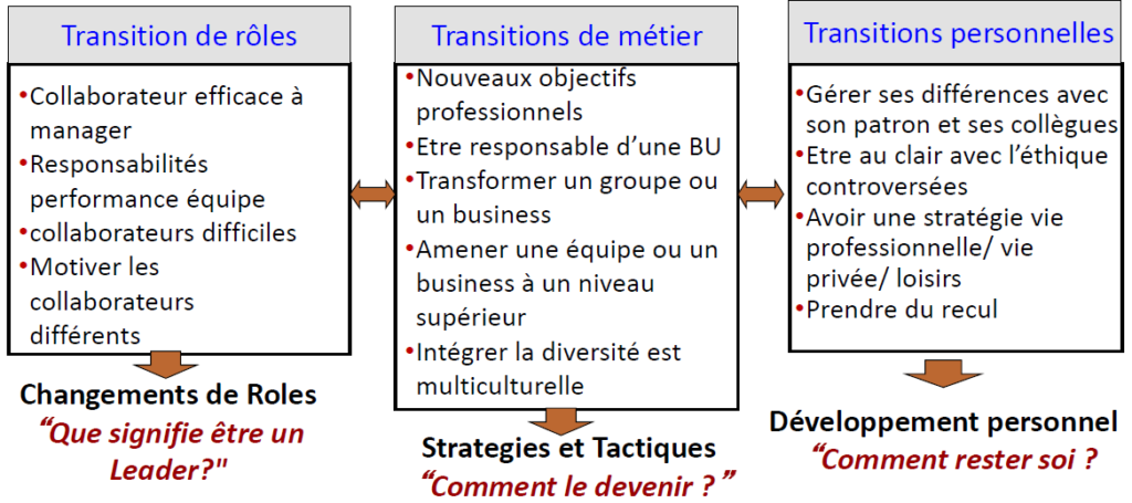 Le leadership de transition